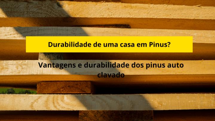 Durabilidade do Pinus