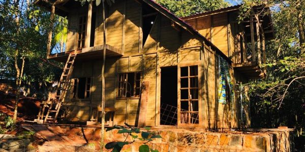 Casa de pinus autoclave veira em cascavel